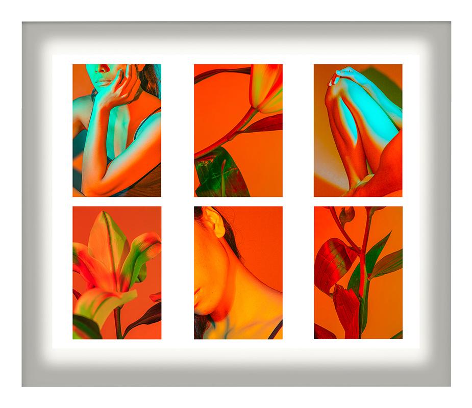 Cru Camara_Figures and Flowers_12x10__photomanipulation_ed_8 framed